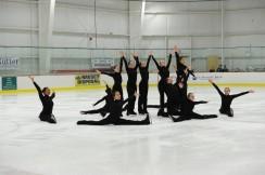 2015 National Theatre on Ice: Novice Team
