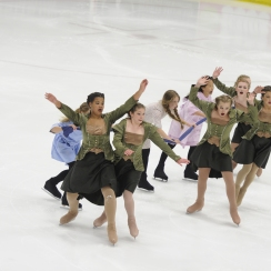 2015 Theatre on Ice: Novice Team