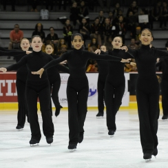 2016 National Theatre on Ice: Novice Team